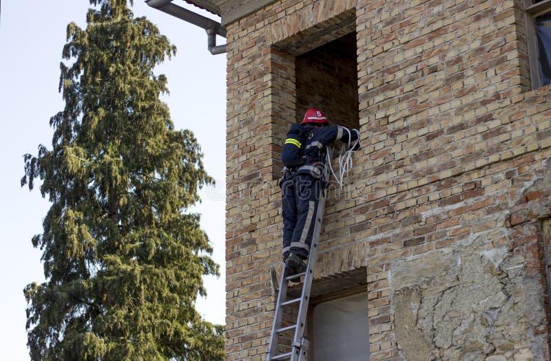Tjänstgörande klättringar för brandman stegen som skriver in fönstret royaltyfria bilder