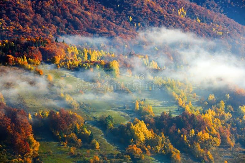 Tjock dimma, som mjölkar, täckt dalen, bak som löneförhöjningbergkullar fotografering för bildbyråer
