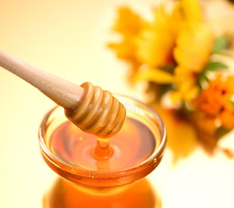 Tjock honungstekflott från träpinnen royaltyfria bilder
