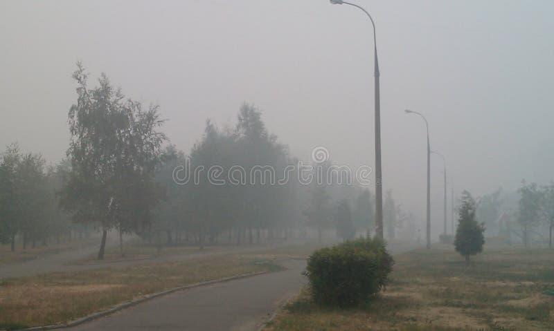 Tjock smog från brinnande skogar fotografering för bildbyråer