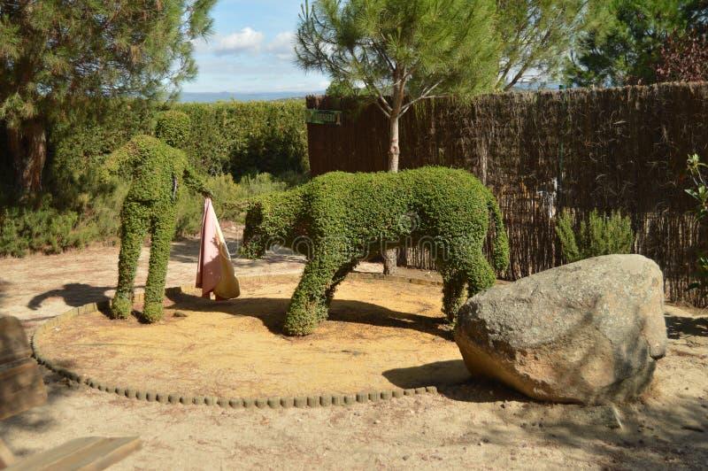 Tjuren för tjurfäktareBullfighting A skapade på nytt i en Fern Sculpture arkivbilder