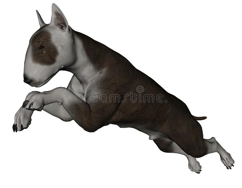 tjurhundterrier stock illustrationer