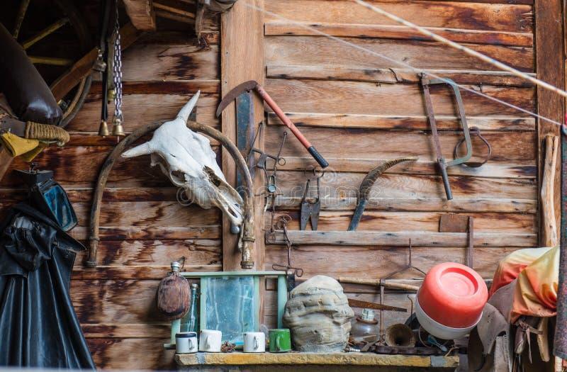 Tjurskalle i ett gammalmodigt byhjälpmedelskjul royaltyfria foton