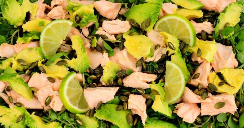 Tjuvjagade Salmon And Avocado Salad arkivbilder