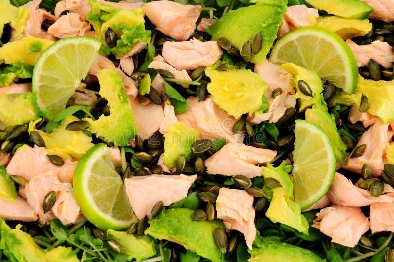 Tjuvjagade Salmon And Avocado Salad arkivbild