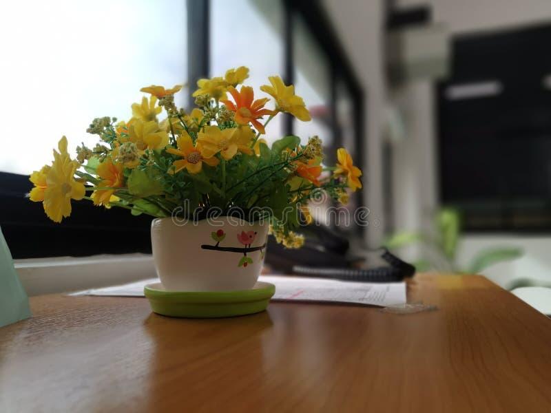 Tkanina kwiat w biurze, Żółty kwiat, żółty kwiat z białym garnkiem fotografia royalty free