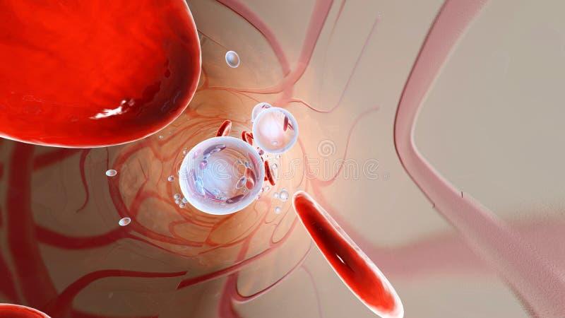 Tlenowe molekuły i erytrocyty unosi się w krwionośnym strumieniu zdjęcia royalty free