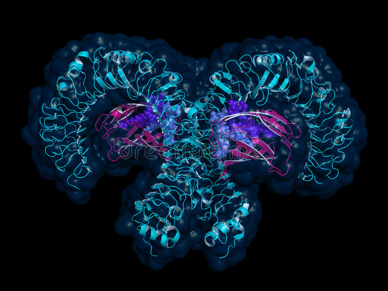 TLR4 tol-als receptor, beeldverhaalmodel met semi-transparent sur stock illustratie