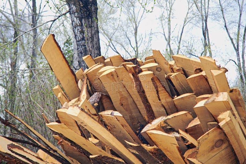 Tnących desek jałowy drewniany przemysł obraz stock