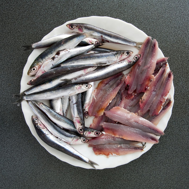 To eat healthy: anchovies of the Mediterranean sea royalty free stock photos
