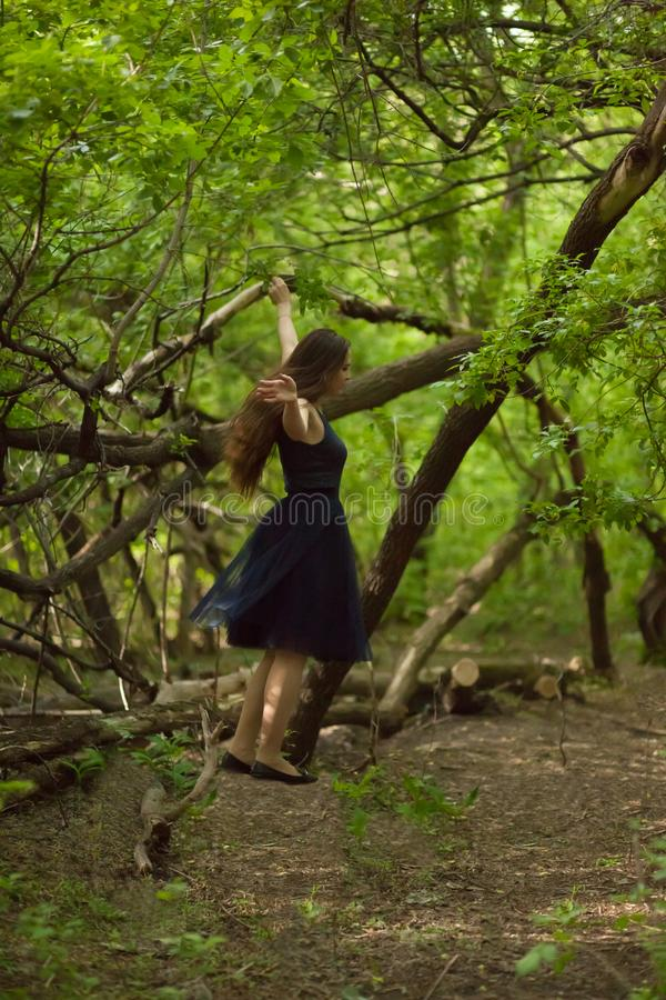 To fly in a dream. a flight among. The trees. sleep. the mental body. going out of the body royalty free stock photography