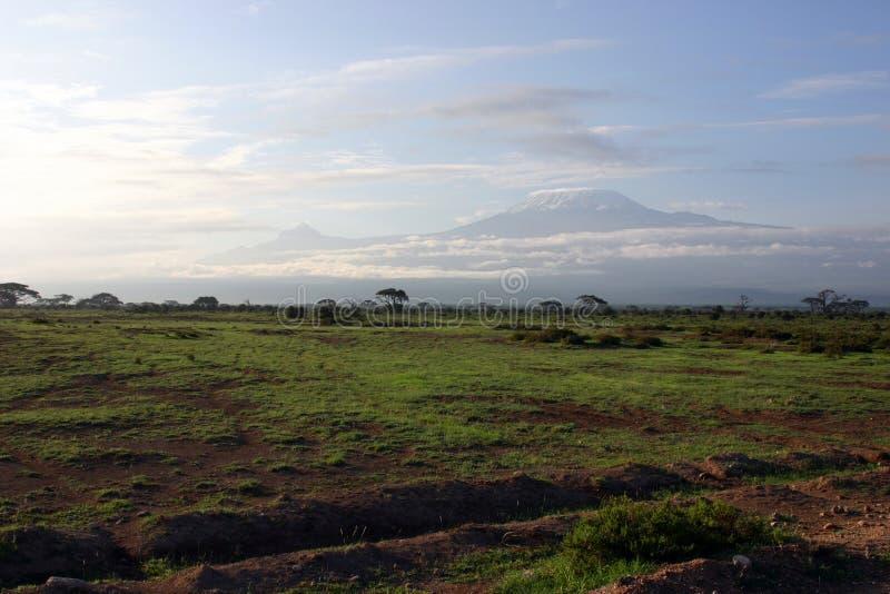 To Kilimanjaro Stock Photography