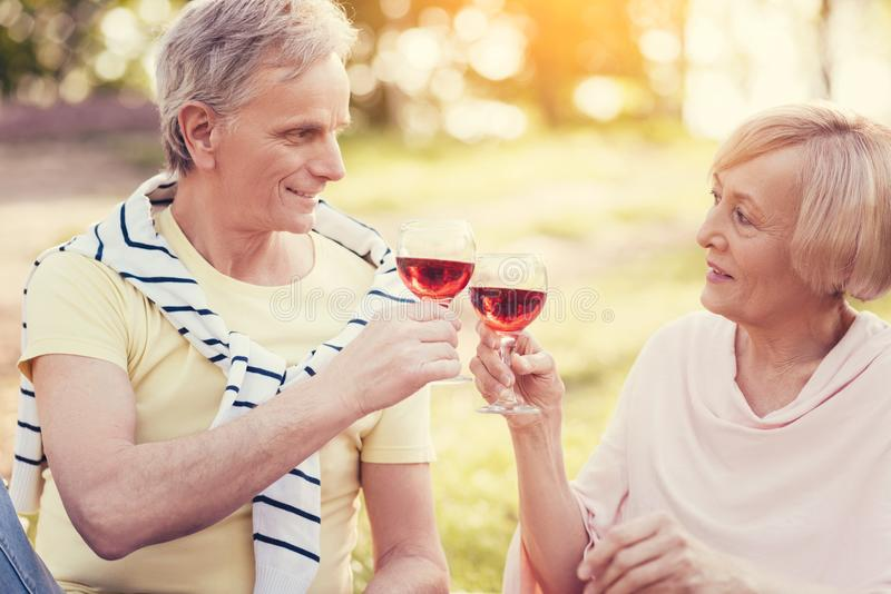 Nice delighted couple clinking glasses royalty free stock photos