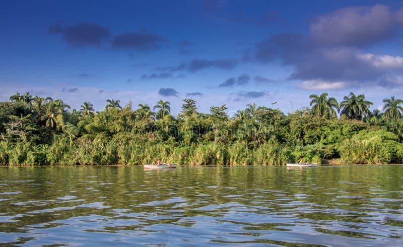 Toa del río cerca de Baracoa Cuba fotos de archivo