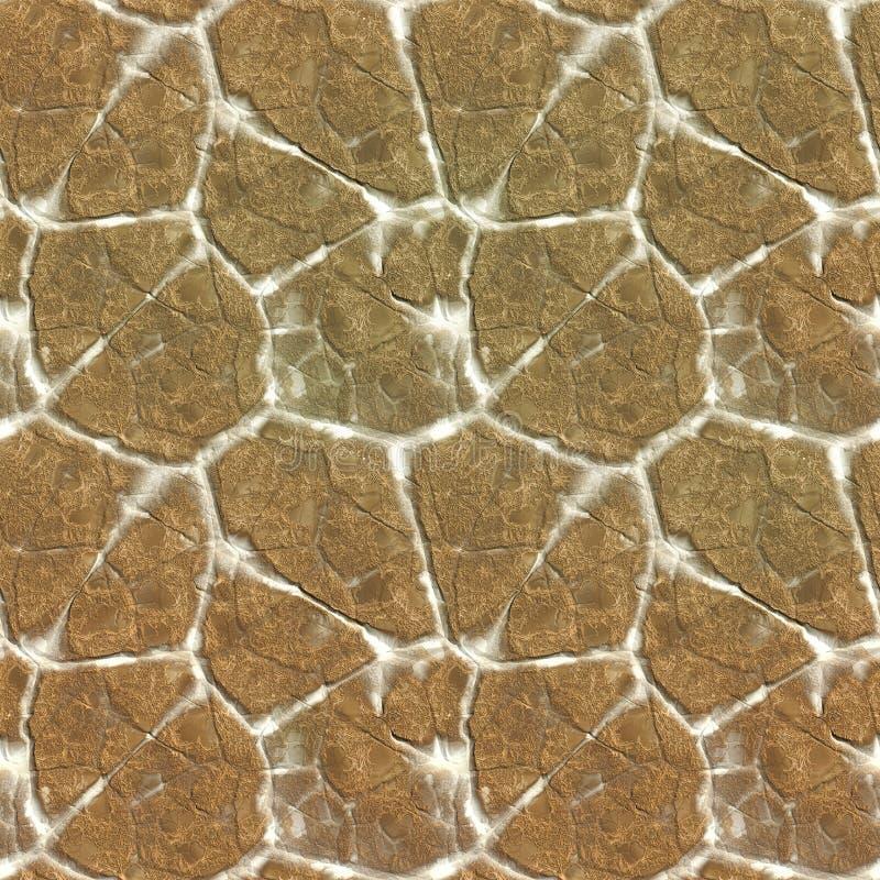 Free Toad Stone Stock Photos - 5873253