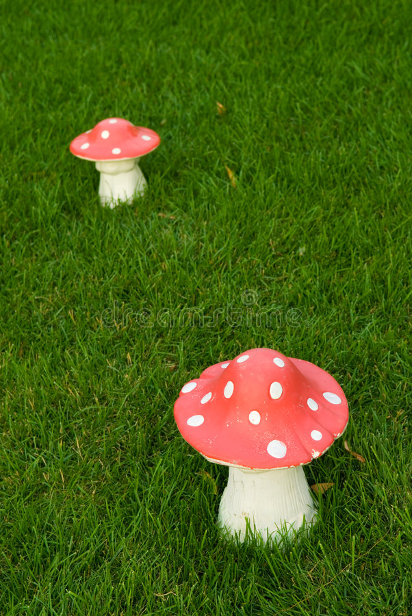 Download Toadstool On A Green Lane Stock Photography - Image: 2780382