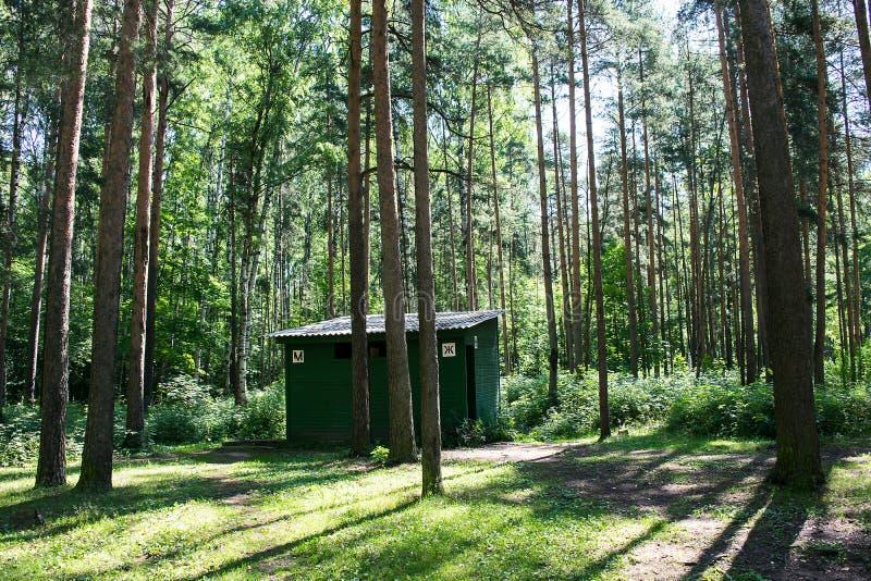 Toaleta w drewnach fotografia stock