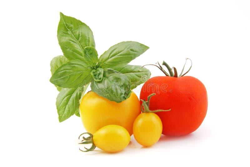 Download Toamato στοκ εικόνα. εικόνα από άσπρος, κόκκινος, ντομάτα - 13182481