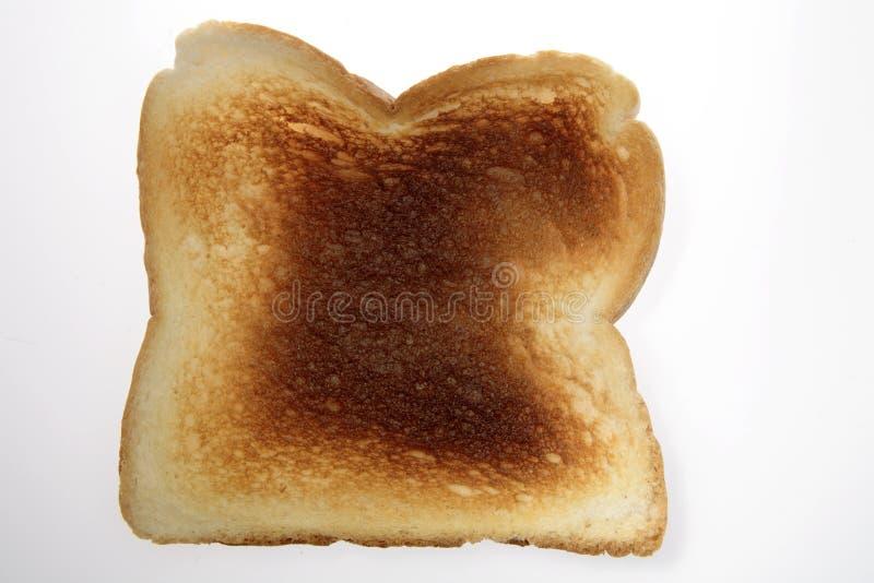 toast obrazy royalty free