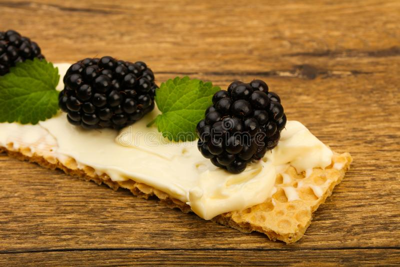 Toast with soft cheese and blackberries. Toast with soft cheese, blackberries and leaves royalty free stock image