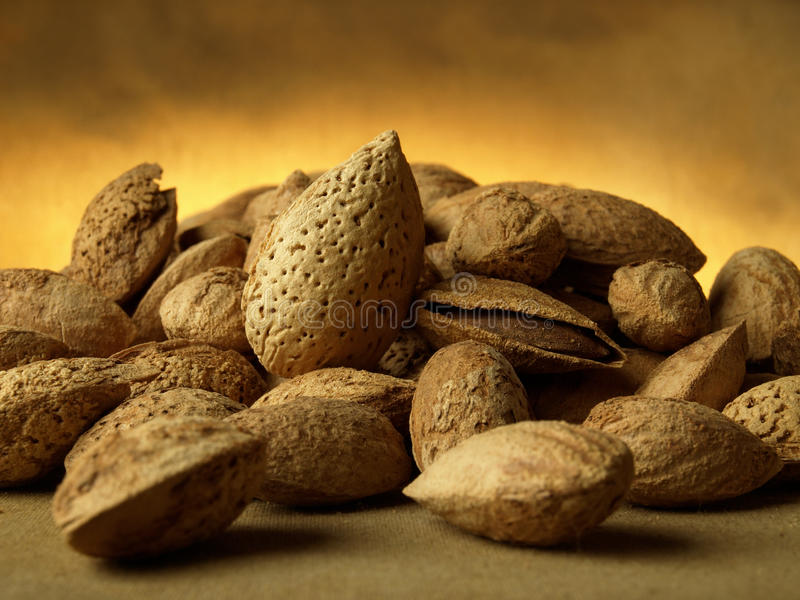 Download Almonds stock image. Image of objects, nobody, gourmet - 14206269
