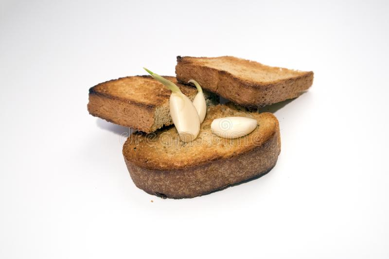Toasted bread slices with appetite crispy crust and few sprouted garlic cloves. Isolated on light background royalty free stock photography