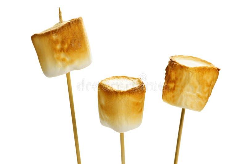 Toasted marshmallows royalty free stock photo