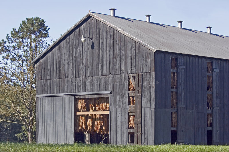 Tobacco Barn royalty free stock photography