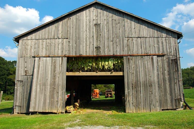 Download Tobacco Barn stock photo. Image of hang, landscape, farming - 225994