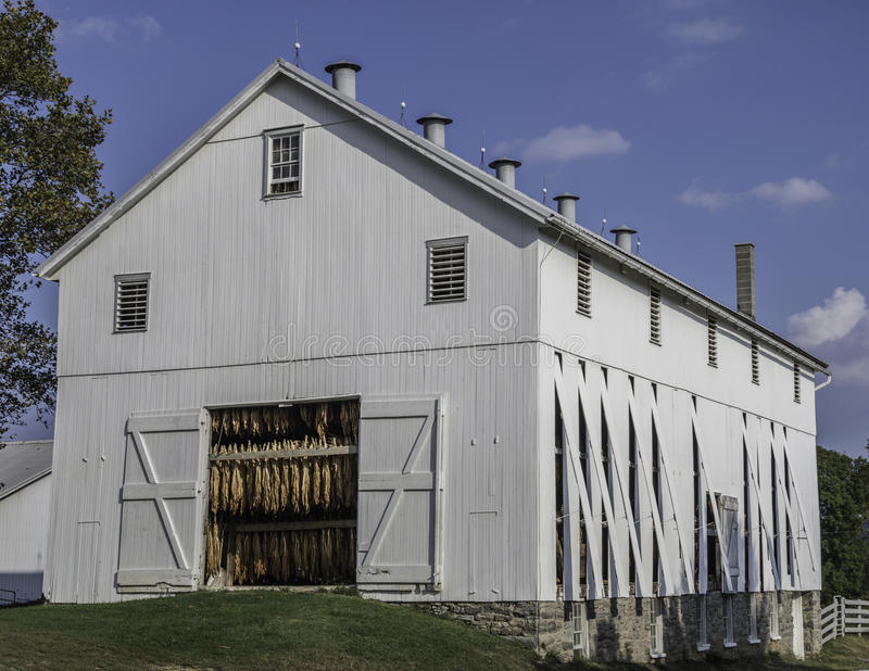 Tobacco Barn royalty free stock images