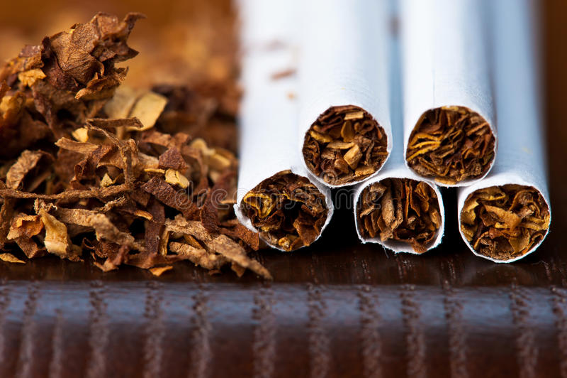 tobacco and cigarettes stock image