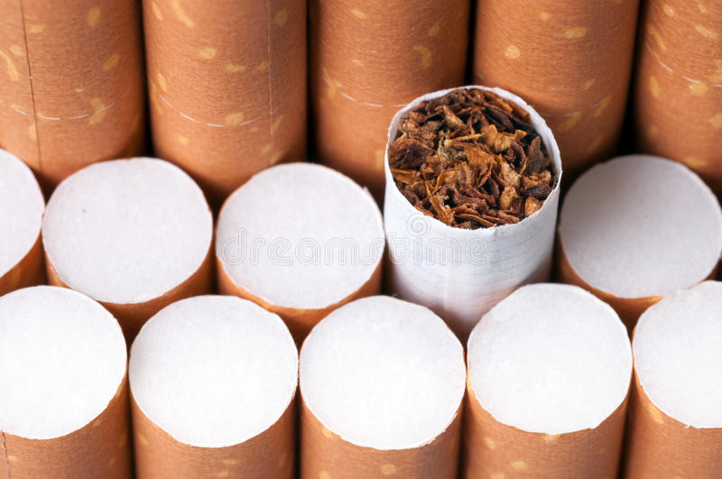 Download Tobacco In Cigarettes Close Up Stock Image - Image: 29958079