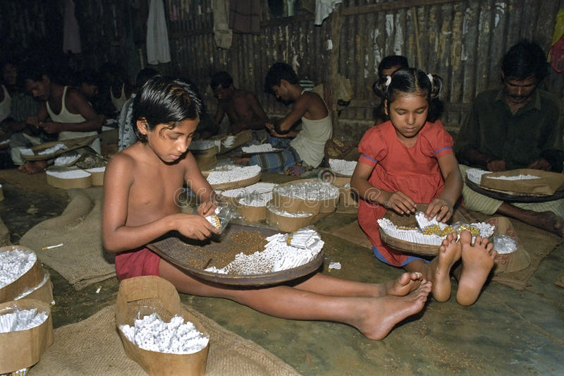 Child labor in Tobacco industry Bangladesh royalty free stock photos
