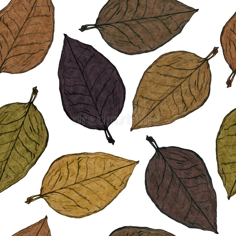 Tobacco leaves in brown color palette royalty free illustration