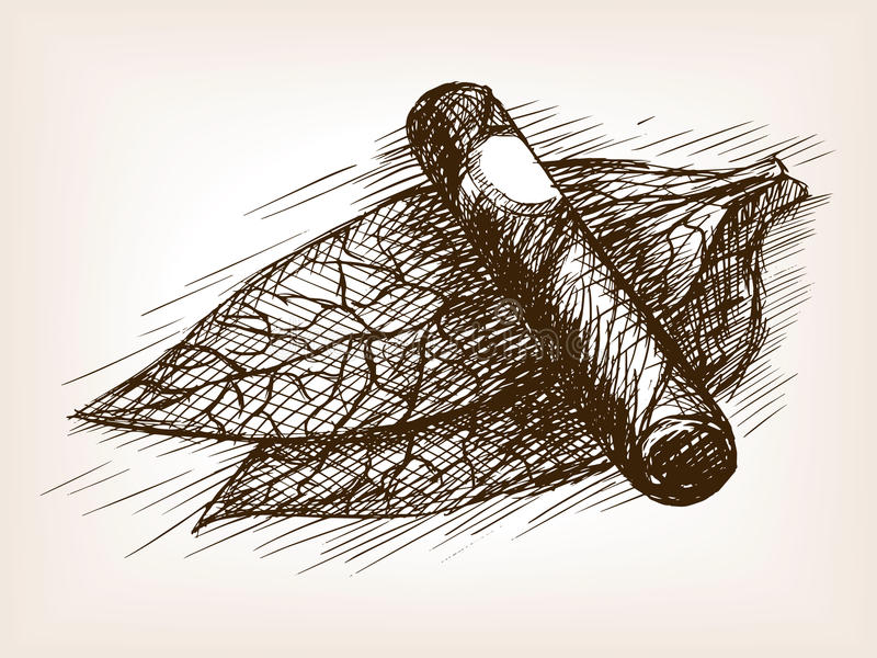 Tobacco leaves and cigar sketch style vector royalty free illustration
