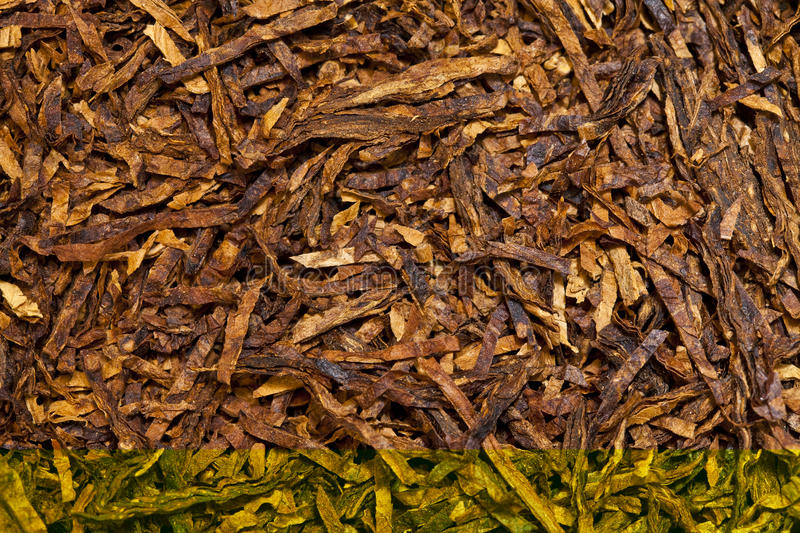 Tobacco for pipe. Smoking photographed close-up royalty free stock photography