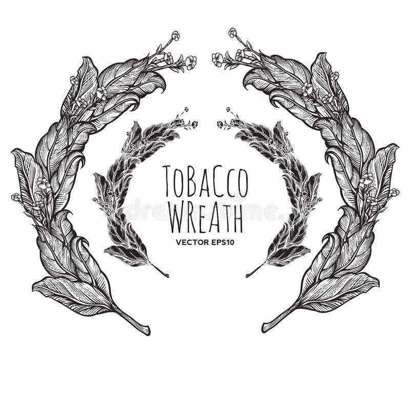 Tobacco wreath royalty free stock image