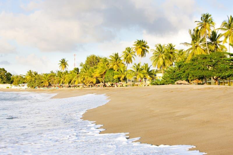 Tobago stockfoto