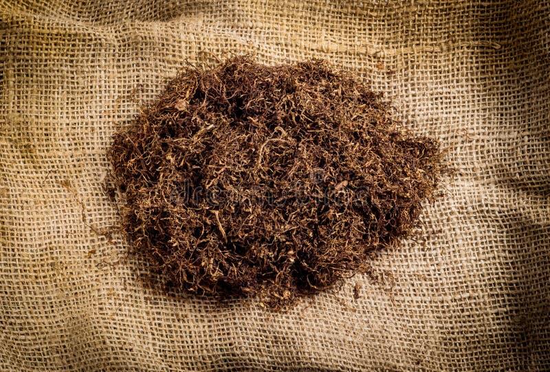 tobak royaltyfria foton