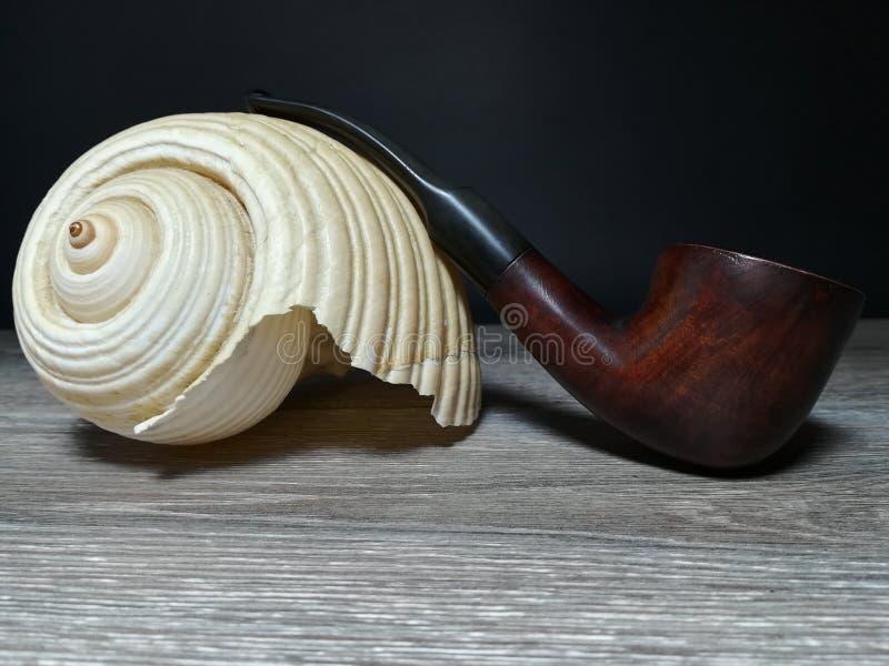 Tobakrör och havsförsäljning arkivbild