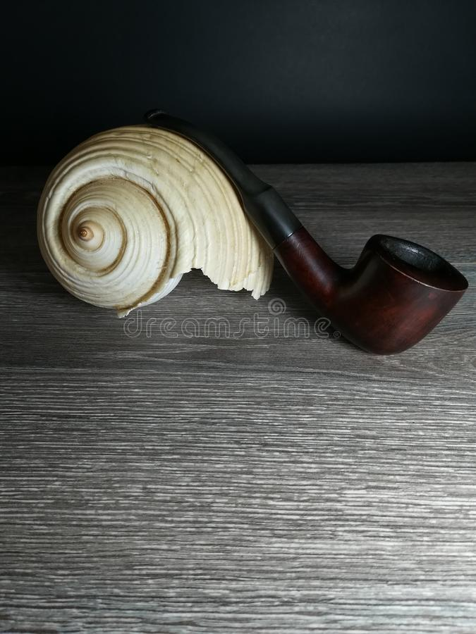 Tobakrör och havsförsäljning royaltyfri foto