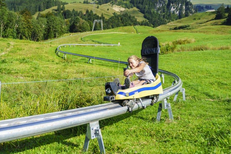 Toboggan лета в Швейцарии стоковые изображения rf
