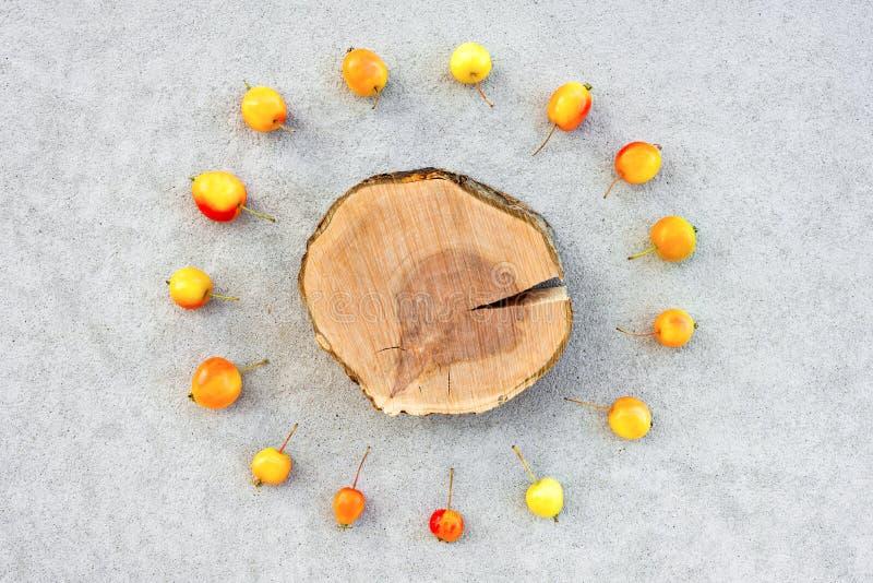 Tocón del manzano con el espacio de la copia rodeado por las manzanas de cereza foto de archivo