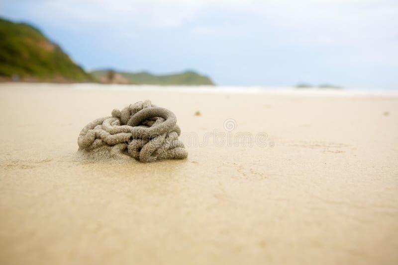 toca do caranguejo do fantasma na praia da areia a arquitetura da arte da natureza vive caranguejos furo e bola da areia arte nat fotos de stock royalty free