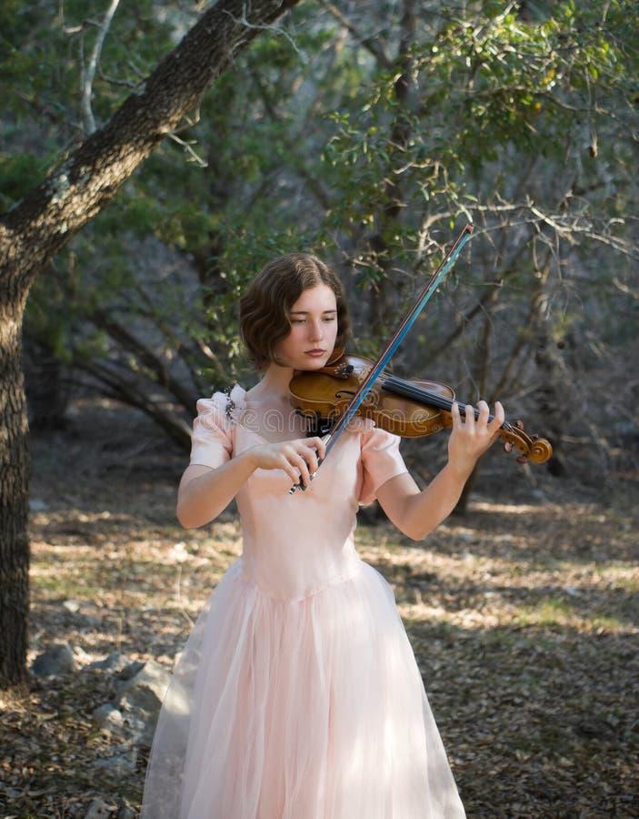 Tocar violino na floresta foto de stock royalty free