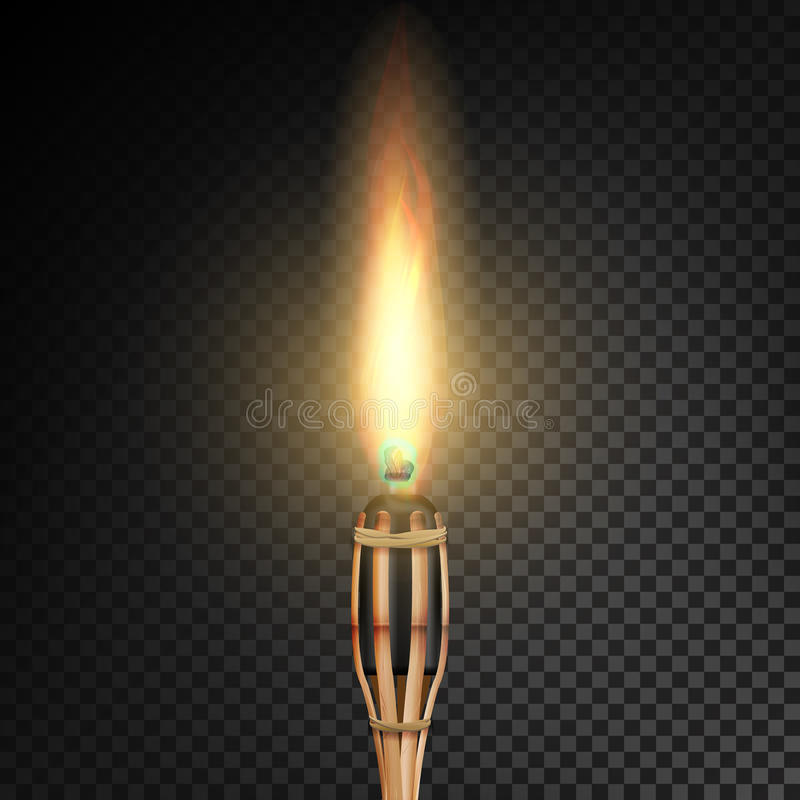 Tocha de bambu da praia ardente com chama Fogo realístico Tocha realística do fogo isolada no fundo transparente Vetor Illustrati ilustração royalty free
