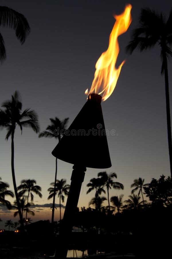 Download Tocha de Tiki foto de stock. Imagem de tropical, nave - 12806636