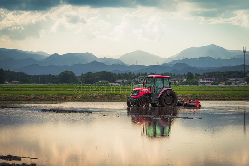 Tractor in a rice paddy. Tochigi, Japan. June 11, 2017. Tractor preparing a rice paddy for planting royalty free stock photo