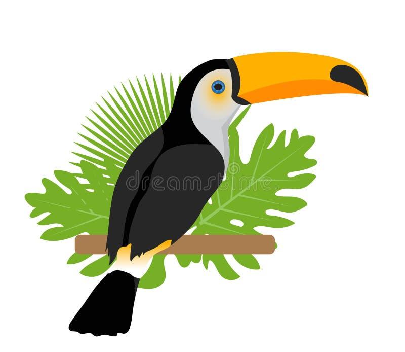 Toco toucan象是舱内甲板,动画片样式 异乎寻常的鸟坐一个分支在热带 背景查出的白色 库存例证