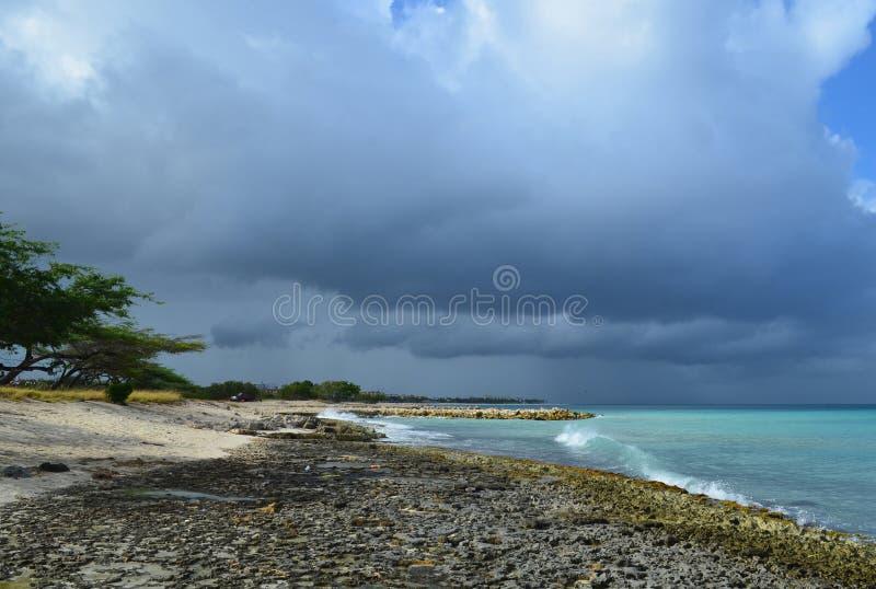 Toczne fala z lawy skały linią brzegową w Aruba obraz royalty free
